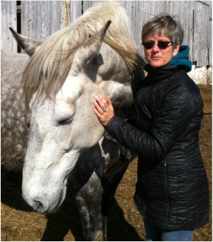 Susan using equine massage
